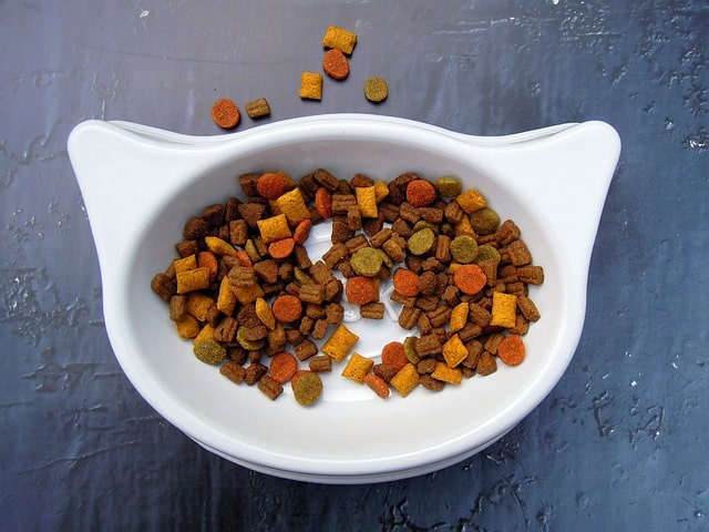 Cat-shaped bowl filled with dry cat food