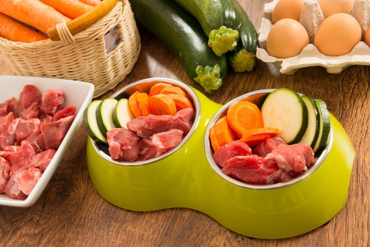 Dog bowl filled with zucchini, veggies, and meat